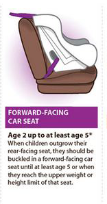 Phenomenal Child Car Seats The Law As It Stands In Ireland Ibusinesslaw Wood Chair Design Ideas Ibusinesslaworg
